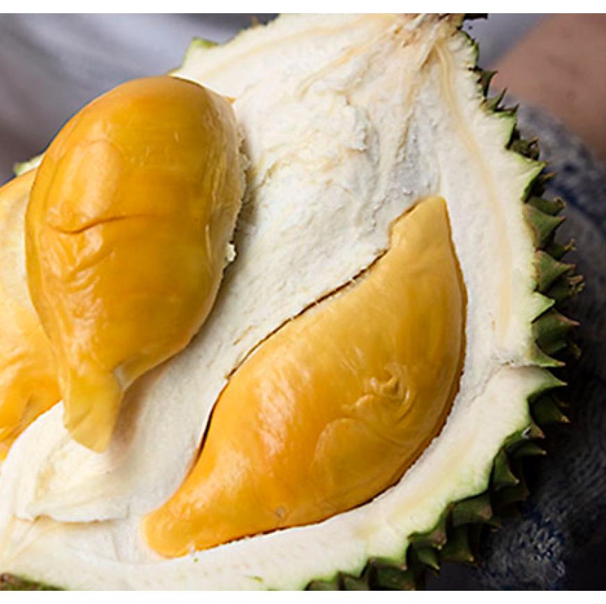 Frozen Durians