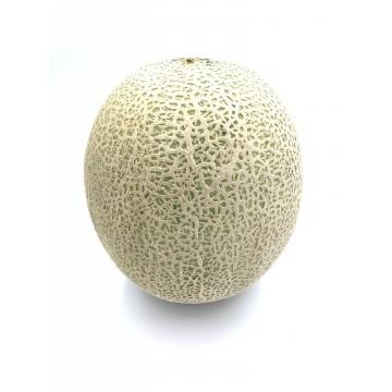 Rockmelon (whole fruit)