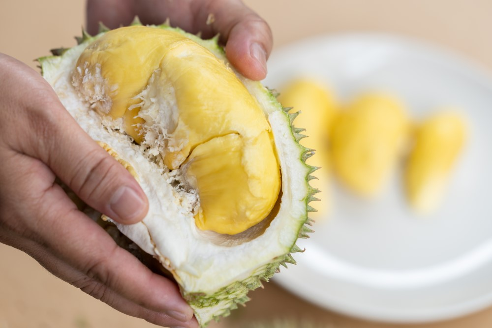 The Ultimate Durian Dictionary: All You Need to Know About Durians