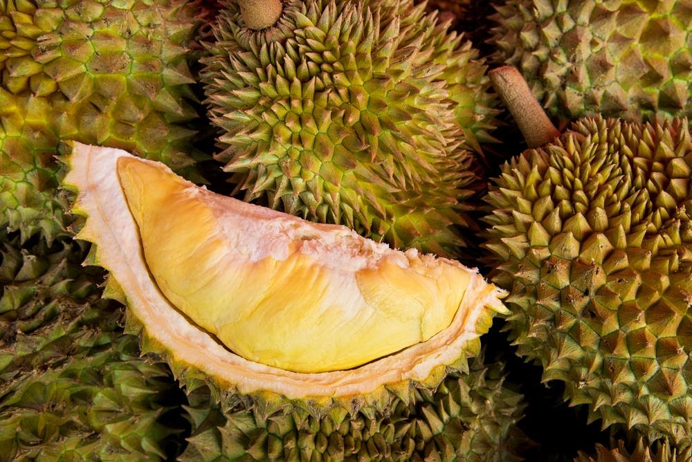 5 Science-Backed Durian Health Benefits You MUST See