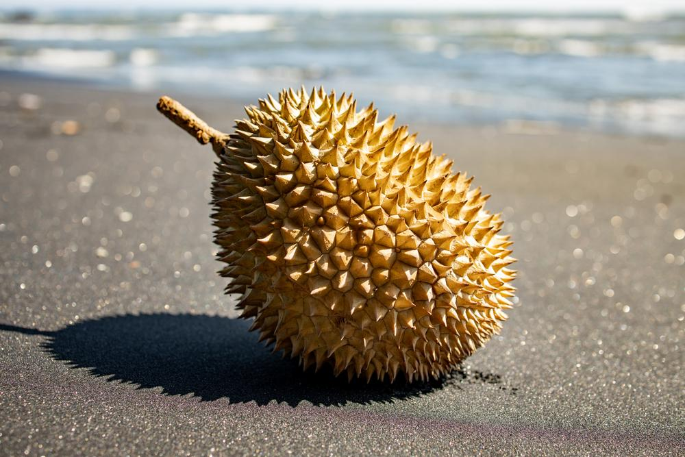 4 Worst Durian Combinations You Should Avoid