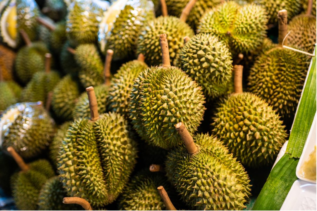 Durian Season 2021: What's in Store (Literally!) for You