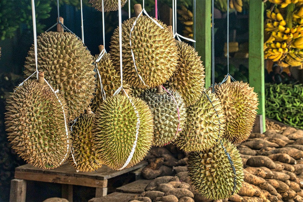Don't Have a Sweet Tooth? These Durians Are For You